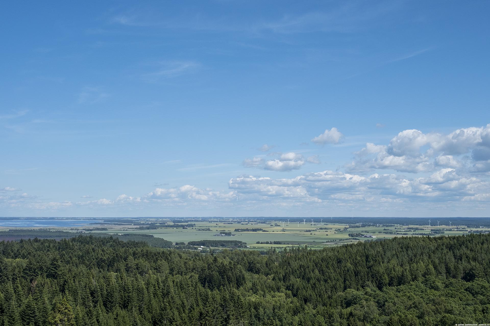 Utsikt på toppen av Omberg |© Janne A