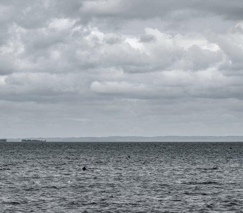Vätterns vatten och moln |©Janne A