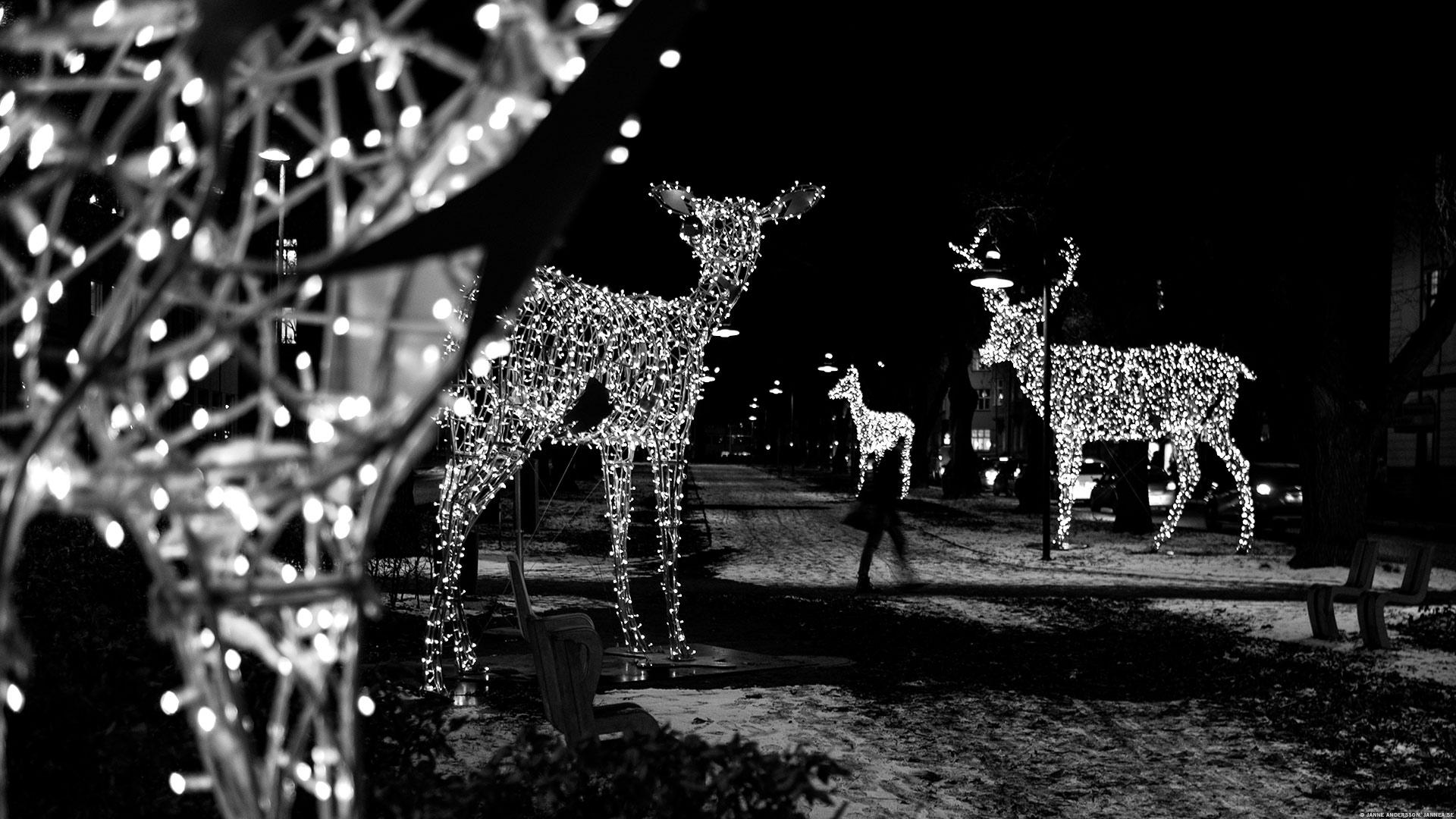 Vinterstad i ljus, Linköping|© Janne A