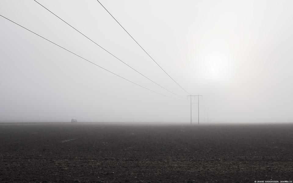 Stolpar i dimma |©Janne A