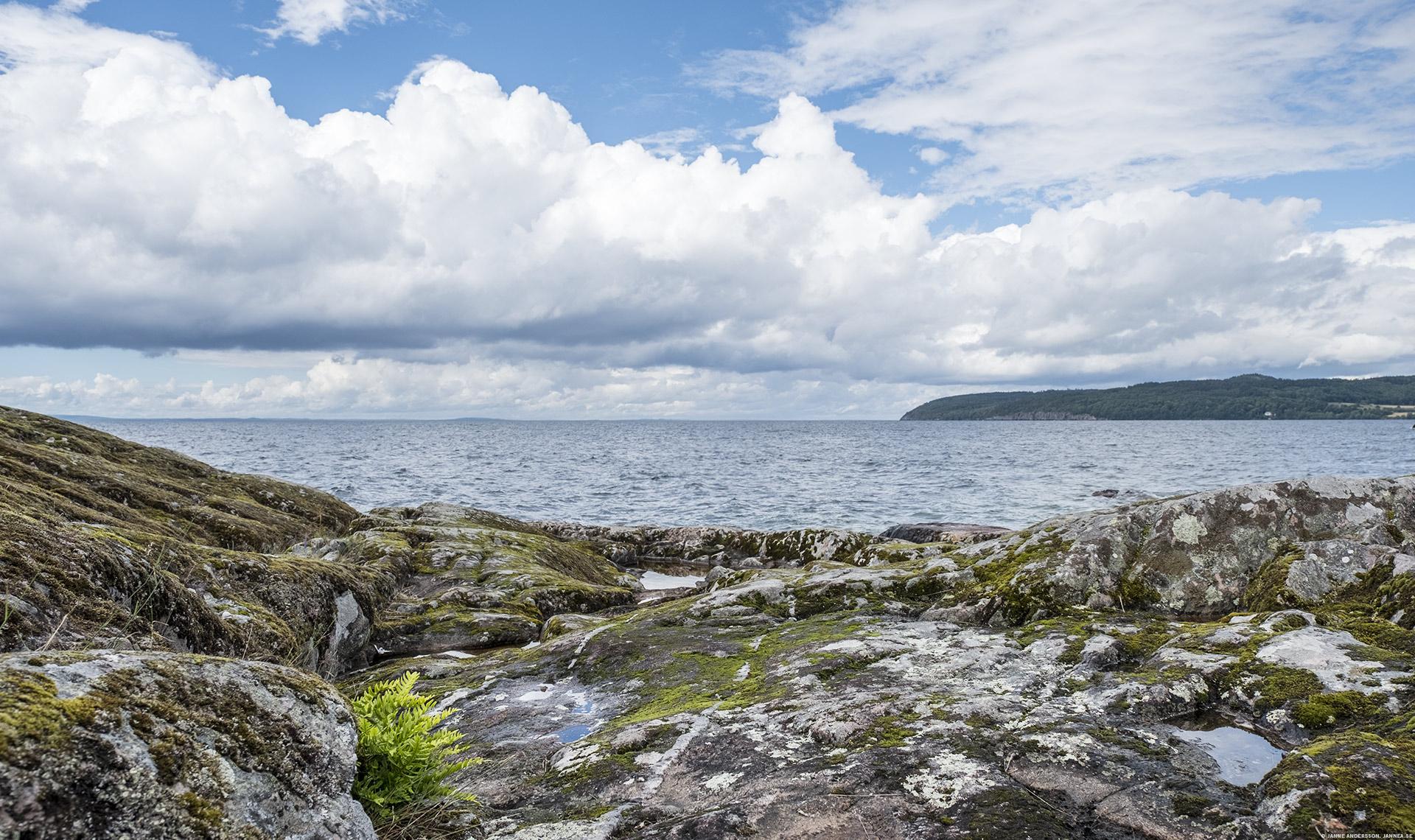 Stora Lunds naturreservat |©Janne A