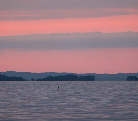 Solnedgång och Fjuk-öarna |©Janne A