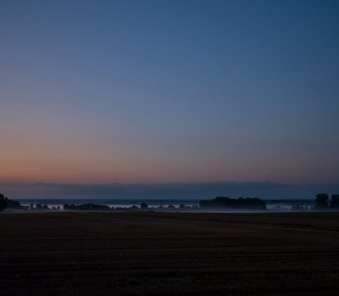 Dimma över Tåkern och slätten  ©Janne A