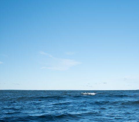 En blåsig sjö och blå himmel|©Janne A