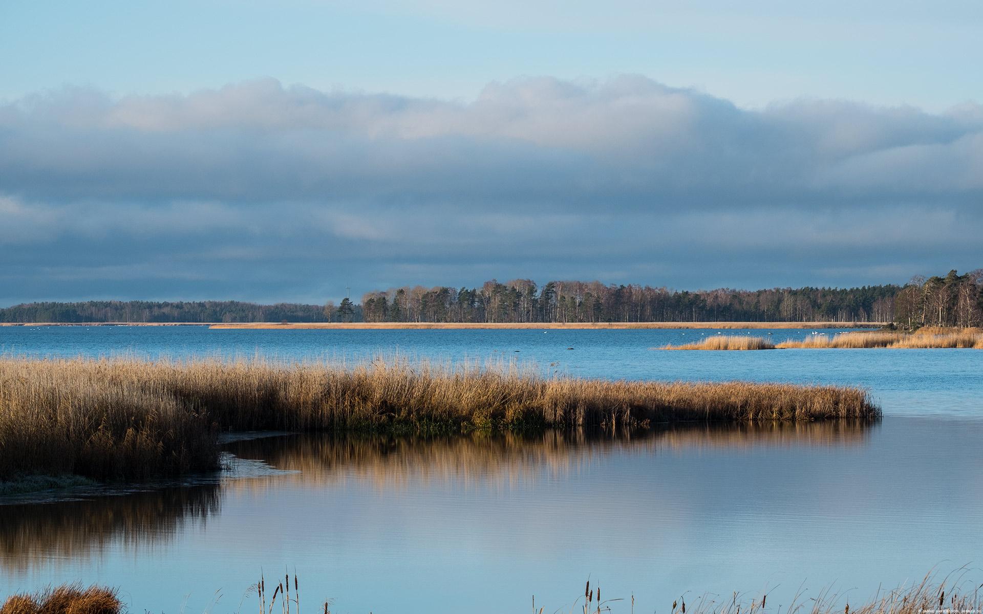 Lördagens sjö –Tåkern | ©Janne A