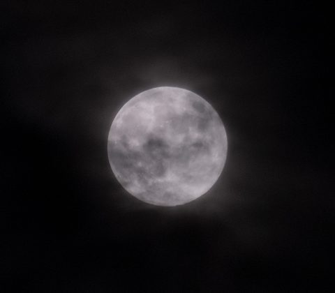 En fullmåne genom molnen   © Janne A