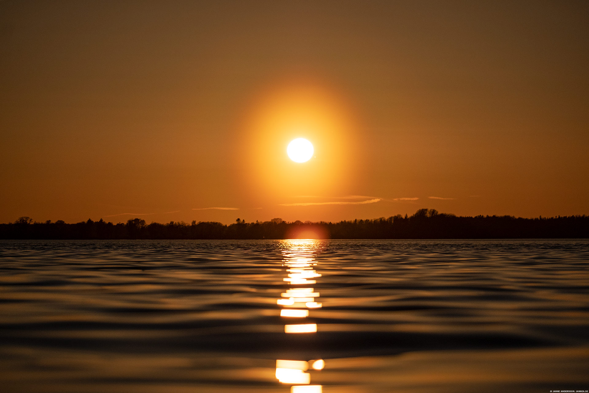 Solnedgångskväll |© Janne A