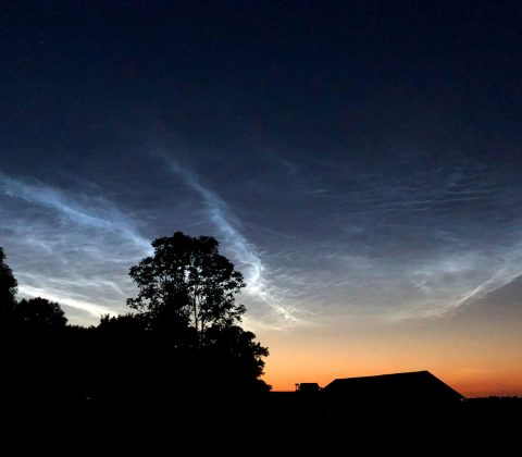 Noctilucent Clouds – Nattlysande moln | © Janne A