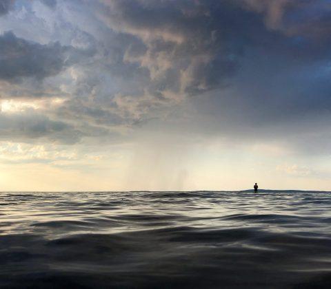 Badkruka: Det där att hoppa ner i vattnet! | © Janne A