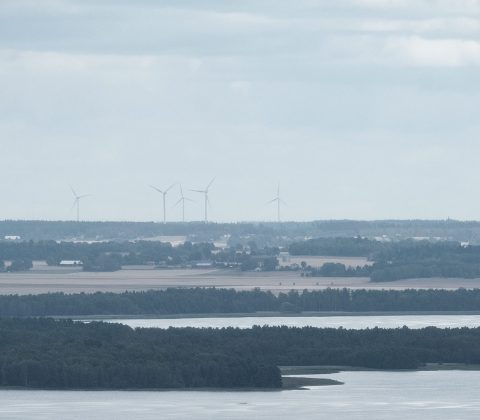 Utsikt över östgötaslätten från Ombergs hjässa |© Janne A