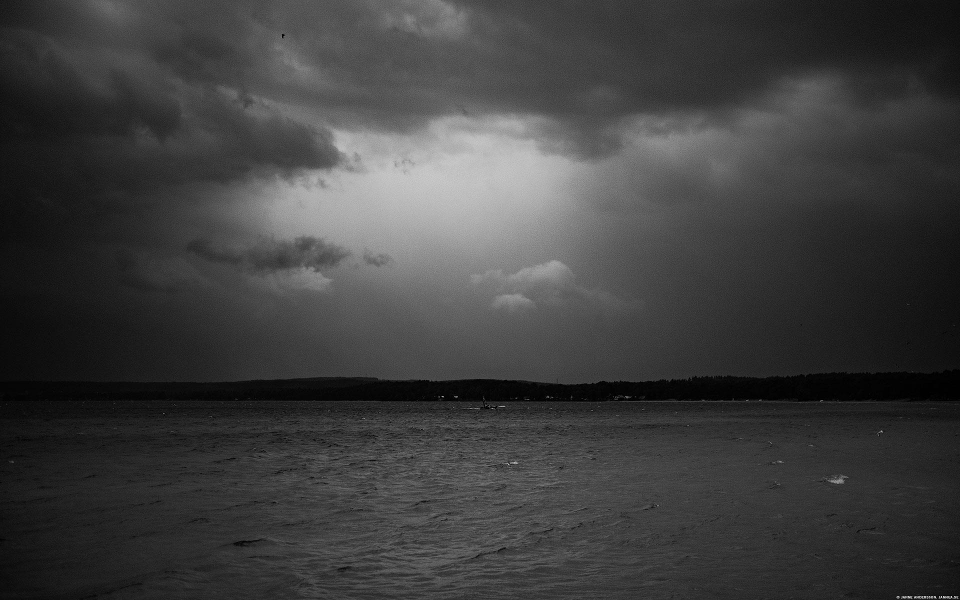 Svartvitt gråväder, regn och blåst |©Janne A