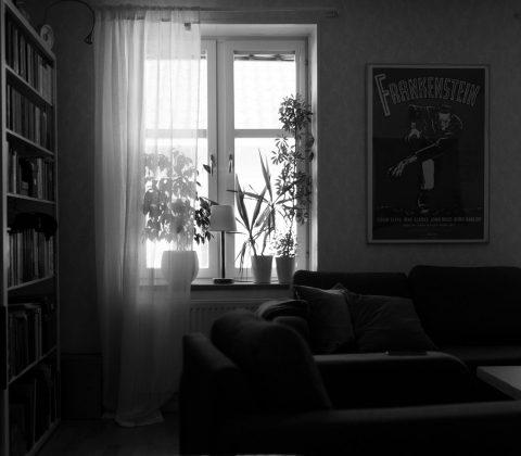 Lördag. Hemma |© Janne A