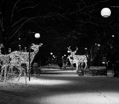 Linköping – Vinterstad i Ljus | ©Janne A
