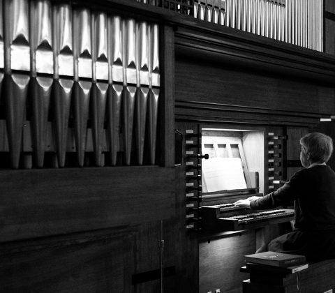 En liten tant och en stor orgel i Vadstena Klosterkyrka |© Janne A