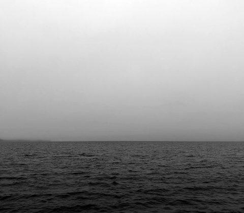 En väldigt grå dag |© Janne A