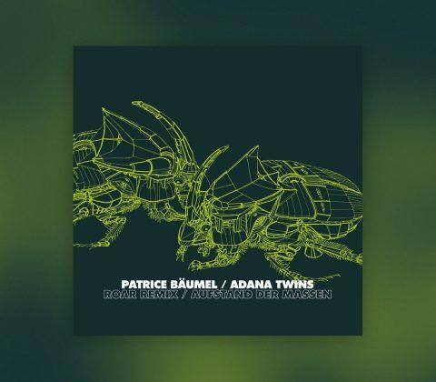 "Patrice Bäumel ""Roar"" Adana Twins Remix"