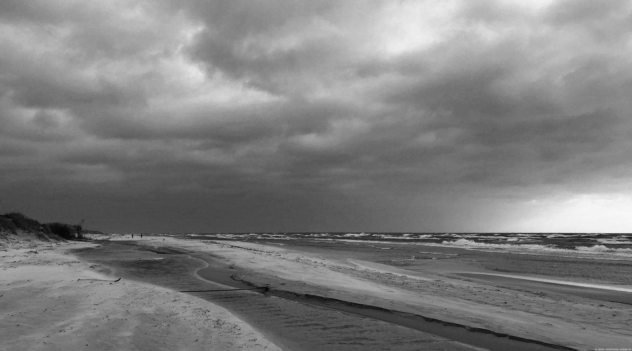 Vid havet, vid Hagestads Naturreservat|© Jan Andersson