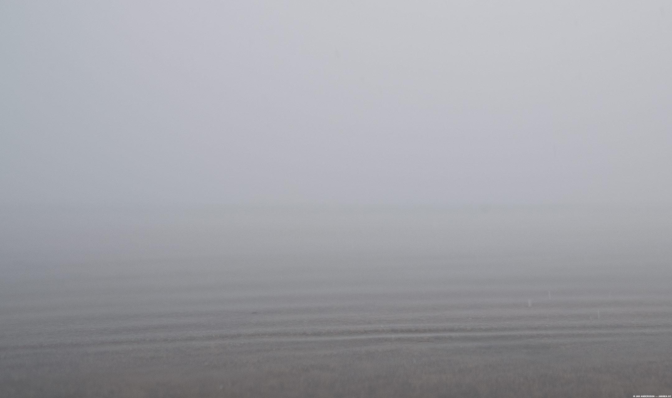 Gråare än gråast över sjön | © Jan Andersson