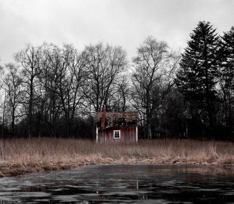 På återbesök i förfallet | © Jan Andersson