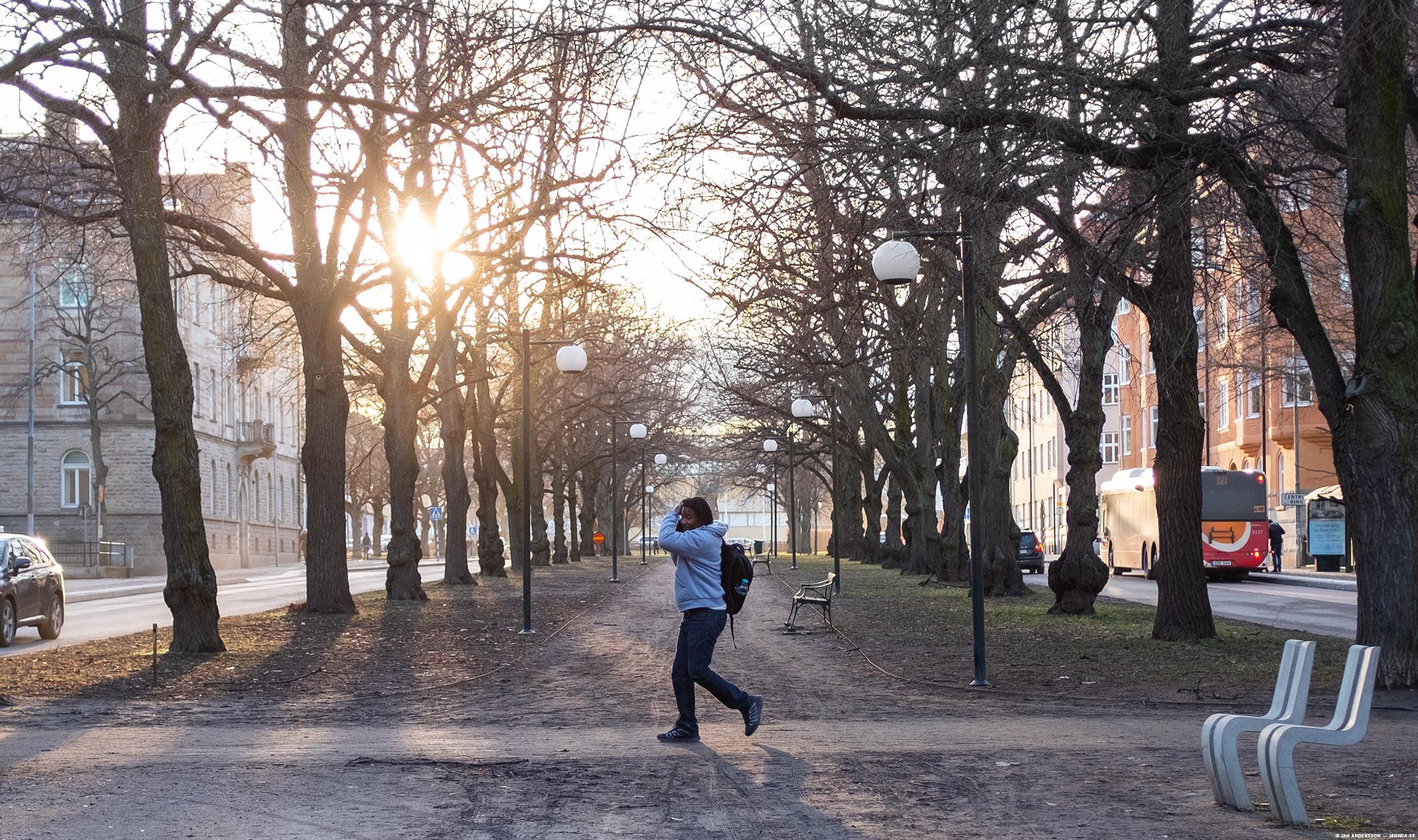 Telefonist in the solsken |© Jan Andersson