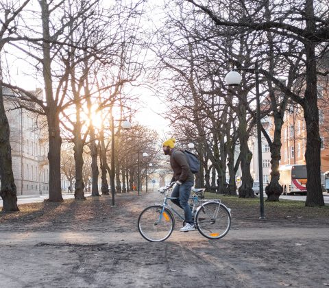 Bicicleta in the sun |© Jan Andersson