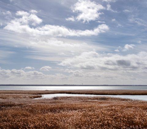 Natursöndag | © Jan Andersson