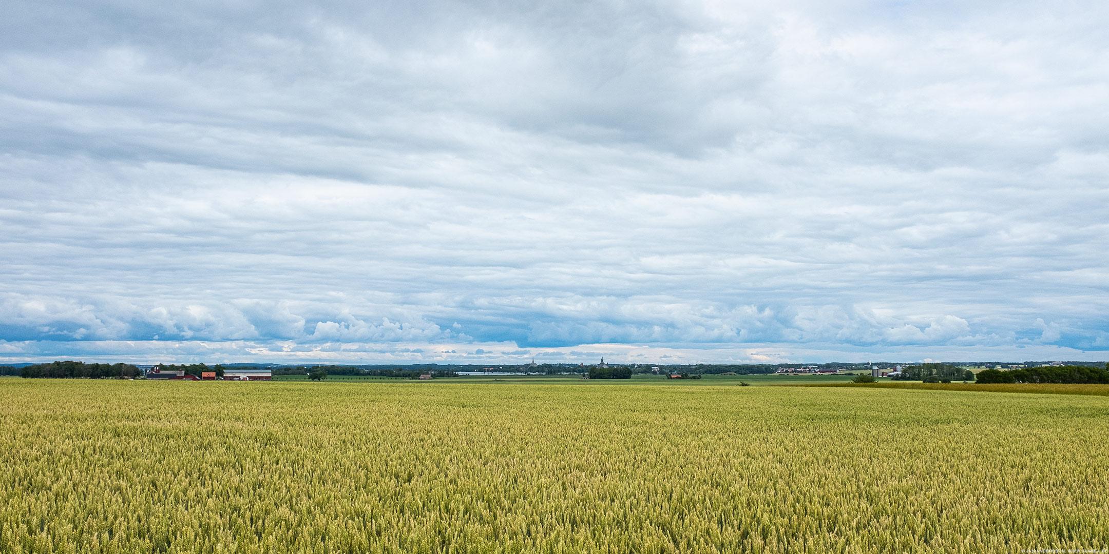 Utsikt mot Vadstena från Örberga |© Jan Andersson