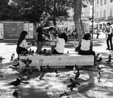 Turister matar fåglar på Praça de Rossio (Praça de D. Pedro IV) i Lissabon |©Jan Andersson