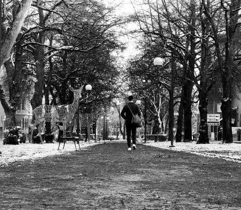 Isig snö och solsken på en fredag|© Jan Andersson